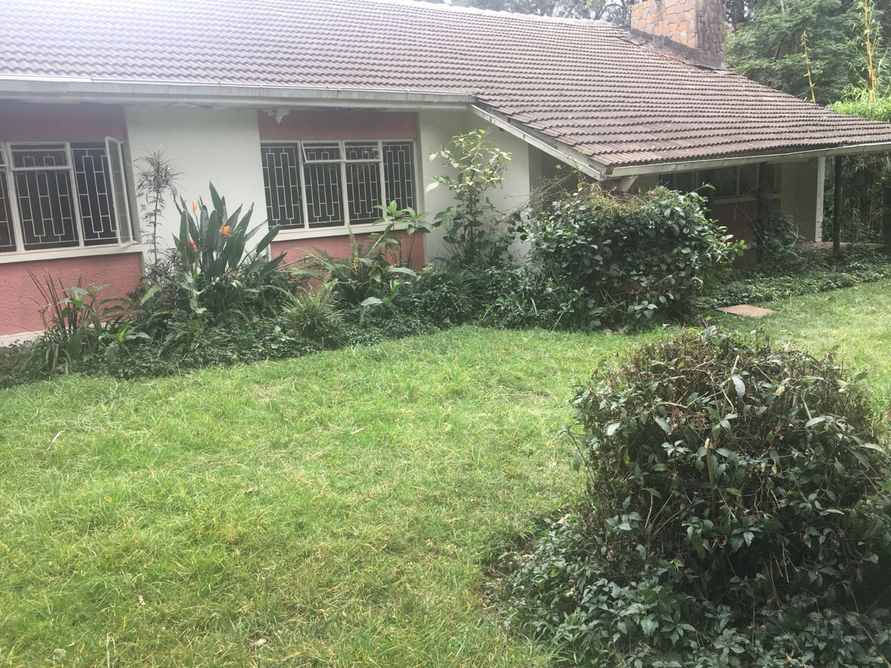 3 Bedroom Bungalow on 1/4 Of An Acre.