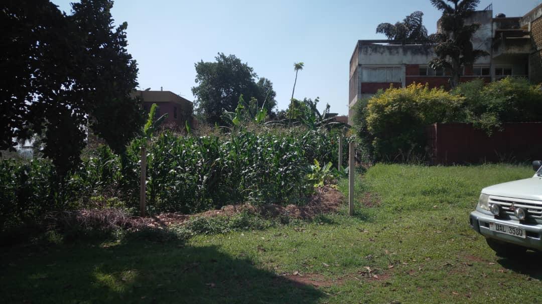 30 decimals for sale in Kololo
